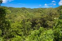 Lots and Land for Sale in Playa Potrero, Guanacaste $80,000