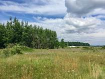 Lots and Land for Sale in Arcadia Township, Michigan $69,000
