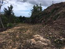 Homes for Sale in Bo. Caimital, Aguadilla, Puerto Rico $108,000