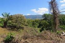 Lots and Land for Sale in Cortez, Puntarenas $23,000