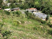 Lots and Land for Sale in Bo. Arenas Ward, Cidra, Puerto Rico $40,000
