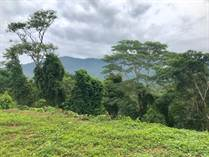 Lots and Land for Sale in Ojochal, Puntarenas $130,000