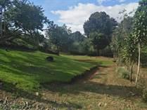 Lots and Land for Sale in San Isidro De El General, Puntarenas $22,000