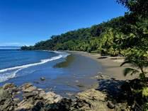 Commercial Real Estate for Sale in Puntarenas, Corcovado, Puntarenas $4,600,000