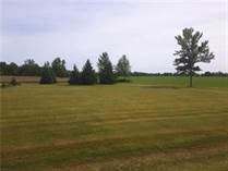 Homes for Sale in Finch, Ontario $34,900