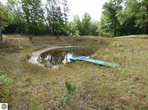 Lots and Land for Sale in Wexford Township, Mesick, Michigan $114,900