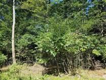 Homes for Sale in Pennsylvania, Towamensing, Pennsylvania $45,000
