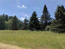 Lots and Land for Sale in Beaverton, Michigan $24,900