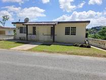 Homes for Sale in Bo. Pasto, Aibonito, Puerto Rico $67,600