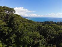 Lots and Land for Sale in Escaleras, Puntarenas $599,000