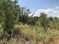 Farms and Acreages for Sale in Collingsworth County, Texas $226,200
