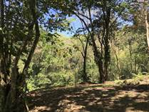 Lots and Land for Sale in Uvita, Puntarenas $50,000