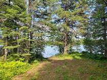 Lots and Land for Sale in Mercer, Wisconsin $49,000