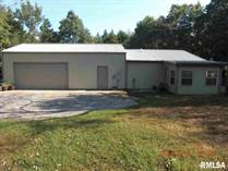 Lots and Land for Sale in Stonefort, Illinois $276,000