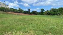 Homes for Sale in Isabela, Puerto Rico $49,000