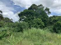 Lots and Land for Sale in Ranchito, Corozal $29,000