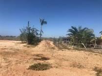 Lots and Land for Sale in Cerritos Beach, Baja California Sur $74,950