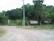 Homes for Sale in Lo de Marcos, Compostela, Nayarit $790,000