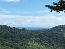 Lots and Land for Sale in Platanillo, Puntarenas $599,900