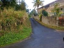 Lots and Land for Sale in Bo. Ceiba Sur, Juncos, Puerto Rico $38,000