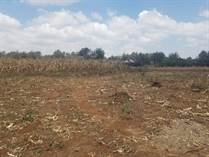 Lots and Land for Sale in Karen, Nairobi KES247,500,000