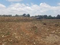 Lots and Land for Sale in Karen, Nairobi KES247,500,000