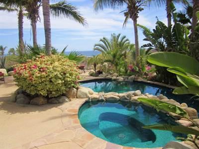 CASA JONES, Suite 45, CABO SAN LUCAS, Baja California Sur