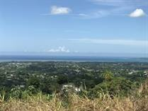 Lots and Land for Sale in Bo. Laguna, Aguada, Puerto Rico $250,000