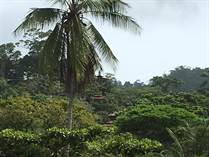 Lots and Land for Sale in Dominicalito, Puntarenas $59,000