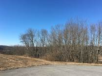 Homes for Sale in West Penn Township, New Ringgold, Pennsylvania $29,000