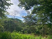 Lots and Land for Sale in Atenas, Alajuela $20,000