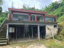 Homes for Sale in Bo. Vivi Arriba, Utuado, Puerto Rico $43,000