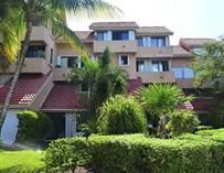 Condos for Sale in Caleta Xel-Ha, Puerto Aventuras, Quintana Roo $135,000