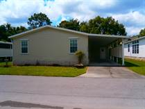 Homes for Sale in New Port Richey, Florida $55,000
