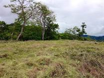 Lots and Land for Sale in Castillo Flamingo, Playa Potrero, Guanacaste $199,000