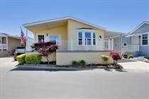 Homes for Sale in Vineyard Mobile Villa, Pleasanton, California $319,000