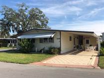 Homes for Sale in Colony Cove, New Port Richey, Florida $26,900