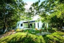 Homes for Sale in Rancho San Martin, Akumal, Quintana Roo $269,690