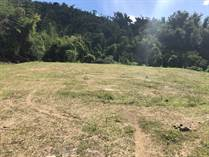 Homes for Sale in Placita II, Juncos, Puerto Rico $29,500