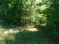 Lots and Land for Sale in Eatonton, Georgia $9,250