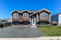 Homes for Sale in Chamberlains, CONCEPTION BAY SOUTH, Newfoundland and Labrador $359,900