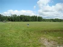 Lots and Land for Sale in Saskatchewan, Spiritwood Rm No. 496, Saskatchewan $47,500