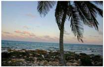 Homes for Sale in Mahahual, Quintana Roo $140,000