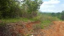 Lots and Land for Sale in Bandera Beach , Parrita, Puntarenas $300,000