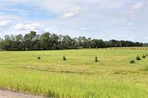 Lots and Land for Sale in Bonnyville No. 87, MD of Bonnyville , Alberta $130,000