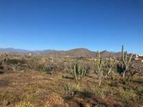 Lots and Land for Sale in Cerritos Beach, Baja California Sur $50,000