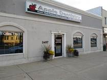 Commercial Real Estate for Sale in South Lansing, Lansing, Illinois $550,000