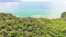 Farms and Acreages for Sale in Osa, Puntarenas $7,000,000