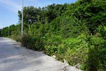 Lots and Land for Sale in Playa del Carmen, Quintana Roo $41,000
