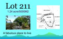 Lots and Land for Sale in Puriscal, San José $72,800